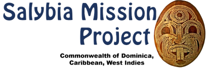 Salybia Mission Project